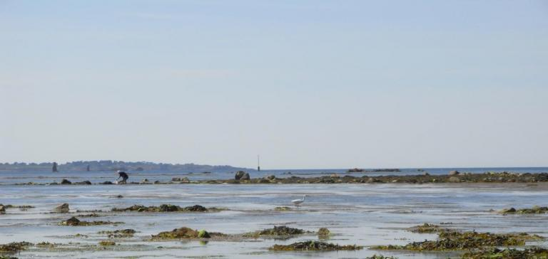 jour de pêche à Port L'Epine